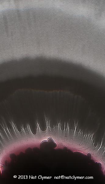 Clymer_N0218_7099